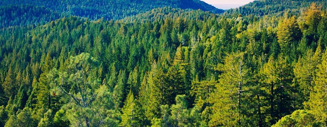 En collaboration avec EOCA, nous prenons soin de l'état des paysages !